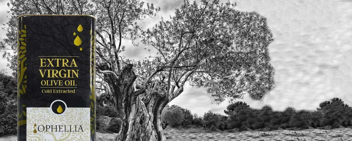 Extra Natives Olivenöl Ophellia